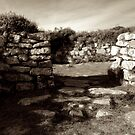 Chysauster Ancient Village, Cornwall by Barnaby Edwards