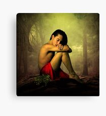 classic mysterious  Canvas Print