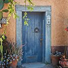 Elysian Grove Market Door by Linda Gregory