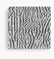 analog generated glitch #3 Canvas Print