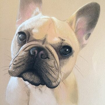 Frenchie! by micheleashby