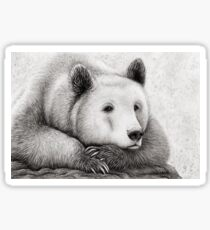 Brooding Bear Sticker