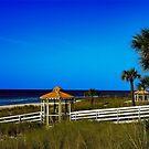 November On The Beach by Mike Pesseackey (crimsontideguy)