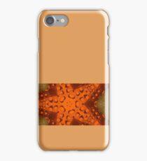 beer star iPhone Case/Skin