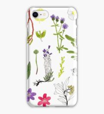 Herbarium / Herbier #2 iPhone Case/Skin