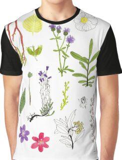Herbarium / Herbier #2 Graphic T-Shirt