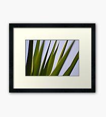 Spiked Framed Print