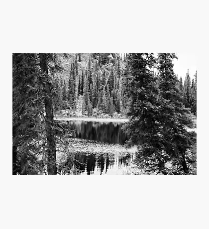 Denali - Reflections in a Pond BW Photographic Print