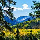 Denali - Golden Valley 2 by mcstory
