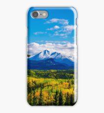Denali - Golden Valley 4 iPhone Case/Skin