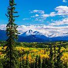 Denali - Golden Valley 4 by mcstory