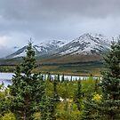 Alaska Mountain Range View by mcstory