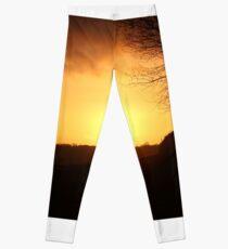Tonight's Sunset Leggings