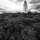 Bruny Island Lighthouse - Tasmania (B&W) by dcarphoto