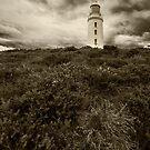 Bruny Island Lighthouse - Tasmania (sepia) by dcarphoto