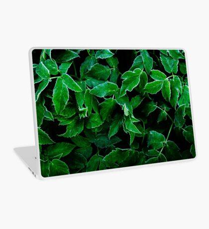 Hypersleep (Studio pouches, laptop skin/sleeve) Laptop Skin