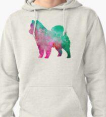 Eurasian in watercolor Pullover Hoodie