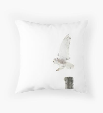 Startled 2 - Snowy Owl Throw Pillow