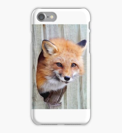 Red Fox Hole iPhone Case/Skin