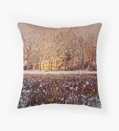 Snow Covered Farm Field Throw Pillow