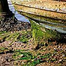 Mucky bottomed Boat by Karen  Betts