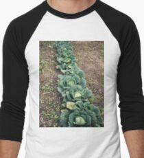 Cabbage Row Men's Baseball ¾ T-Shirt