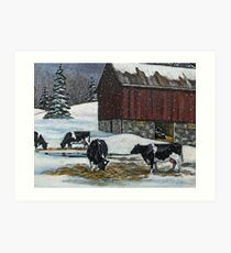Cows in Snowy Barnyard, Original Painting, Farm Animals, No. 2 Art Print