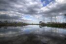 Tollesbury Woodup Pool by Nigel Bangert