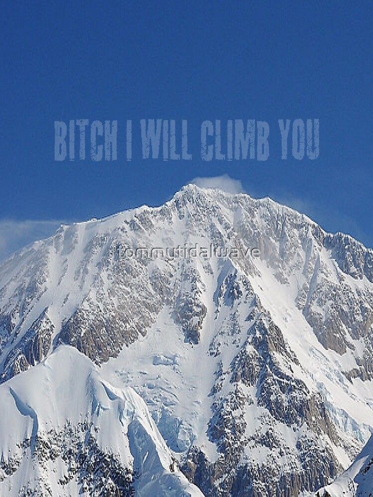 Funny Music Lyrics- Bitch I Will Climb You by tommytidalwave