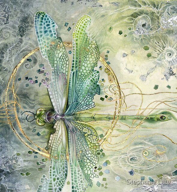 Beautiful Enchanted Dragonfly  by Stephanie Law