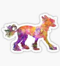Chinese crested dog 01 in watercolor Sticker