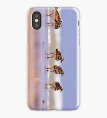 a group of Ruddy Turnstone (Arenaria interpres)  iPhone Case