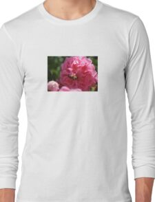Honey Bee Collecting Pollen On A Pink Rose T-Shirt