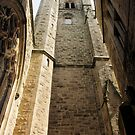 Perpendicular Church Architecture by Francis Drake