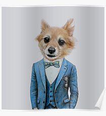 dog in tuxedo Poster