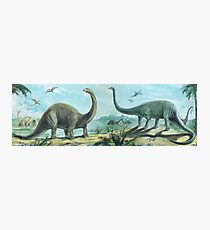 Brontosaurus & Diploducus Frieze Photographic Print