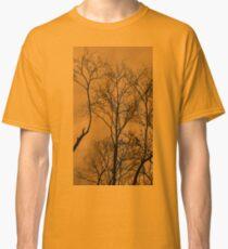 Winter Sun Classic T-Shirt