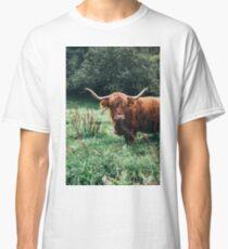 Scottish Cattle Classic T-Shirt