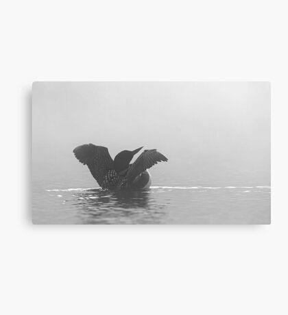 Common Loon - Wilson Lake Canvas Print