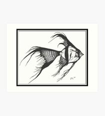 Silver Veiltail Angelfish Cathy Peek Fish Art Art Print