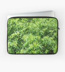 Marijuana Laptop Sleeve