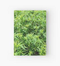 Marijuana Hardcover Journal