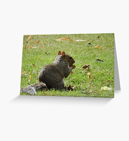 Fancy a nibble? Greeting Card
