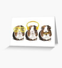 Guineapigs Greeting Card