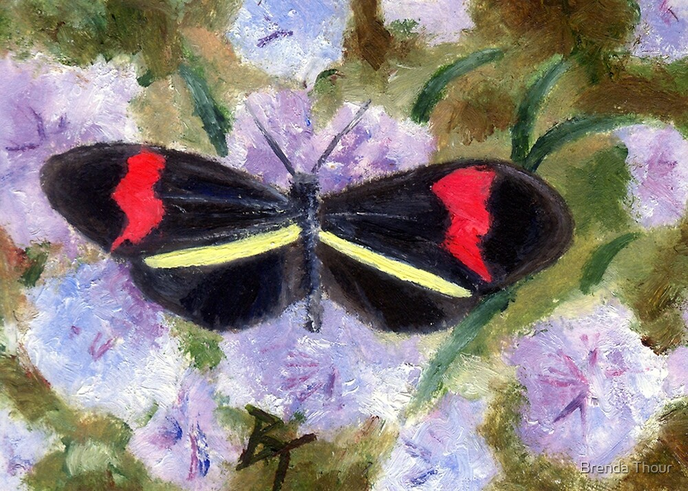 BUTTERFLY ACEO by Brenda Thour