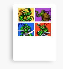 Half Shelled Heroes Canvas Print