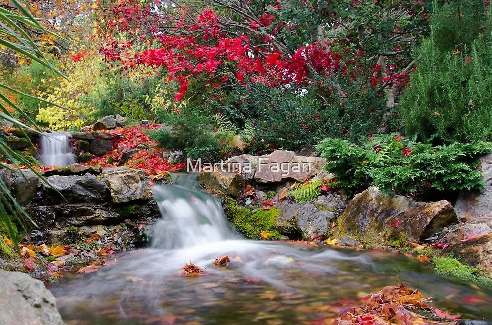 Autumn In The Botanic Gardens by Martina Fagan