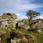 Holwell Tor on Dartmoor by Pete Hemington