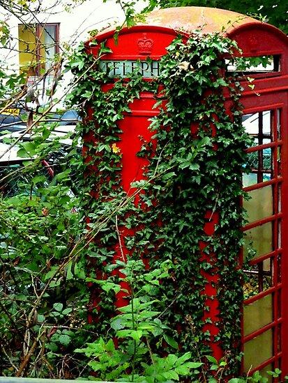 Overgrown Phonebox by Charmiene Maxwell-Batten