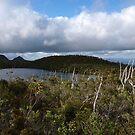 Lake Osborne by HildaJorgensen